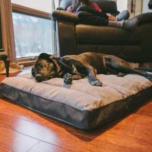 Ruffwear Restcycle dog bed MSRP $99.95
