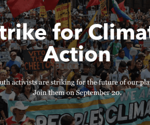 Patagonia's Climate Strike