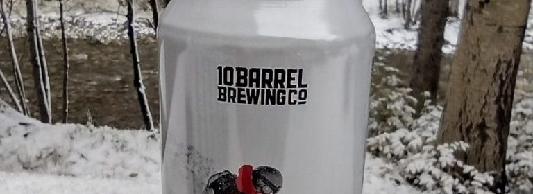10 Barrell Brewing Pray for POW Winter Stout