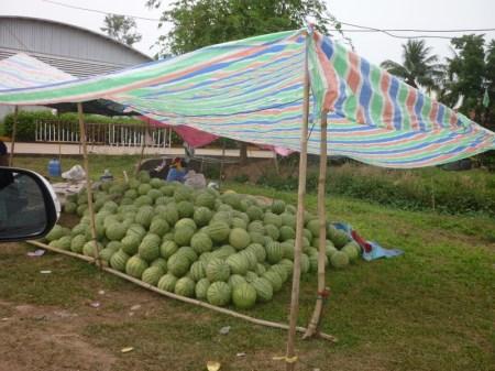 Melonenverkäuferin am Straßenrand von Vientiane. Die kürbisgroßen Melonen kosten umgerechnet zwischen 50 ct und 1€