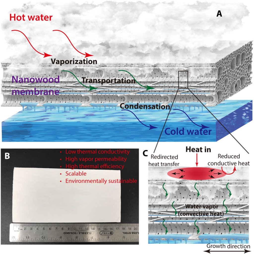 madeira nanoestruturada
