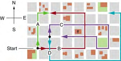 Figure 3.54 The various lines represent paths taken by different people walking in a city. All blocks are 120 m on a side