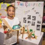 Stem Achievement In Baltimore Elementary Schools Goals Stem Achievement In Baltimore Elementary Schools