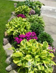 01 Fresh Front Yard Landscaping Ideas