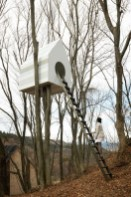 1 _ In A Japanese Forest_ A Treehouse For Birds And People _ Co.Design_ business _ innovation _ design