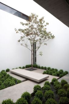37 Beautiful Garden Pictures For You _ Engineering Basic (10)