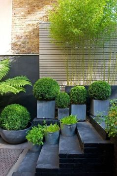37 Beautiful Garden Pictures For You _ Engineering Basic (27)