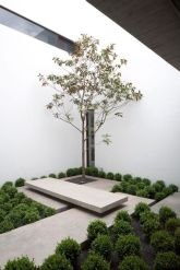 37 Beautiful Garden Pictures For You _ Engineering Basic (29)