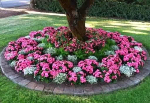 (49_) Front Yard Landscaping Ideas _ Simple Design for Garden & Beds