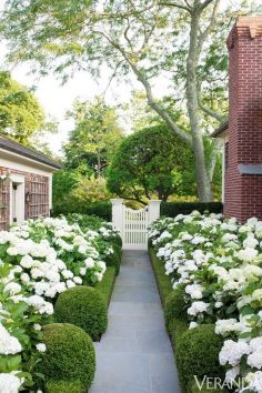 68 Stunning Walkways Ideas for Backyards and Gardens _stunningwalkwaysideas _stunningwalkways _backy.ORG
