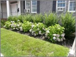 Adorable 55 Fresh Front Yard Landscaping Ideas _Fresh _FrontYard _Ideas _Landscaping