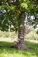 Art Students Created A Portable Staircase You Can Use To Climb Trees And Get A Better View Of The Wo