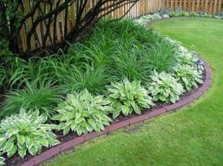 Best pictures_ images and photos about front yard landscaping ideas with perennials _homedecor _gar (20)