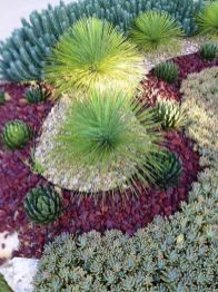 Best pictures_ images and photos about front yard landscaping ideas with perennials _homedecor _gar (25)