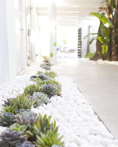 Best pictures_ images and photos about front yard landscaping ideas with perennials _homedecor _gar (38)