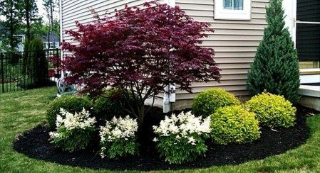 Best pictures_ images and photos about front yard landscaping ideas with perennials _homedecor _gar (47)