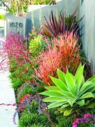 Best pictures_ images and photos about small front yard landscaping ideas _homedecor _gardendecor _ (3)