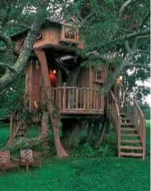 Cool tree house images designs that are great in style. _TreeHouseDecor _treehouselove _backyardfarm _DreamHomeDe