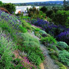Design tips for gardeners