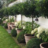 Easy DIY Backyard Landscaping On A Budget (09)
