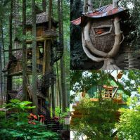 Extreme Tree Houses _ three level and wicker