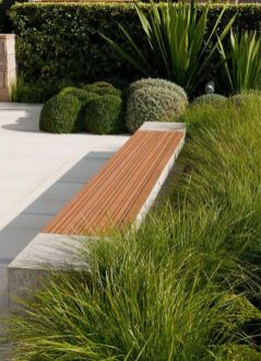 Grasses can be formal in the landscape too_ Plant profiles www.bluedale.com.... Buy online www.bluedaleplant... Visit today_ _ModernGardens