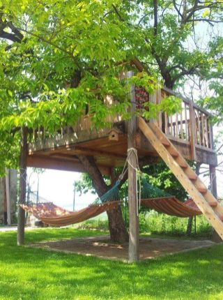 I really wish I had a gorgeous hammock in a gorgeous spot where my gorgeous dogs could keep me compa... Kid Inspir