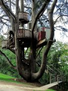 Love this treehouse_ Makes us feel like kids again. _ Via Flickr_ photo credit_ Michael Storer