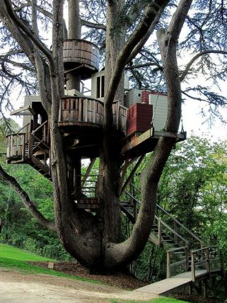 Love this treehouse_ Makes us feel like kids again. _ Via Flickr_ photo credit_ Michael Storer