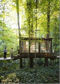 Low and lovely. Windows fill this little treehouse with light and I love the entry via enchanting footbridge over