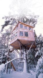 Midday Muse_ Treehouse Holiday