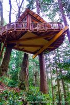 Nelson Treehouse Sky Pirate Hideout