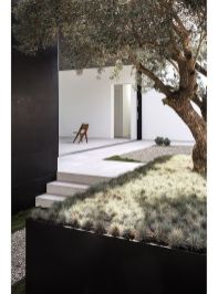 Precisely organised garden _ _styleminimalism _outdoorsliving