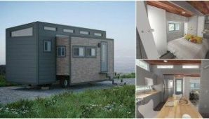 Spacious and Stylish 288 Square Foot Everett by American Tiny House _ Tiny Houses (1)
