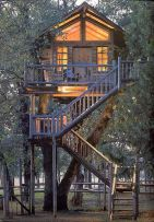 Staircase up to a warmly_lit treehouse