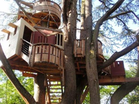 There_s no barking up the wrong tree here. You_re going to want to move into these 15 amazing tree houses.