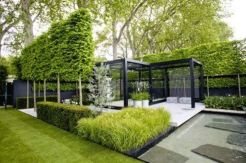 This is the modern formal where plants are only one of the elements that makes this garden a success.The formal trees wrap the design and draws the attention into the landscape.