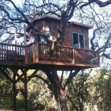 Tree House With A Deck Designs _treehouse _backyardideas _kidtreehouse _diytreehouse