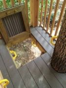 Tree House _ traditional _ kids _ other metro _ Bianco Design & Build Corp.