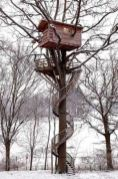 Treehouse Treehouse Treehouse...amazing_ I_m a _tree hugger_ & I could live in this one_ _)