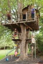 Treehouse Tribute