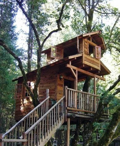 Treehouse _ Rhonda Grossman. This is want dad should build for the grand kids
