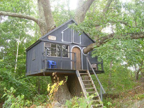 Treehouse _ Treehouse _ TipaDaKnife _ Flickr