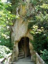 Twitter _ Kambrieldesign_ The enchanting entrance to ...