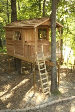 Using spaces generally left empty in traditional homes is a common tiny house practice_ such as_ s.