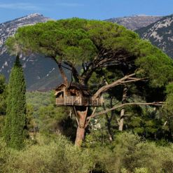 treehouse _ the perfect treehouse _ mosey