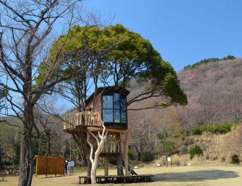 treehouses by takashi kobayashi_ japan _ designboom _ architecture & design magazine