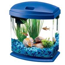 Fish_Tank (3)