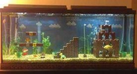 Fish_Tank (80)