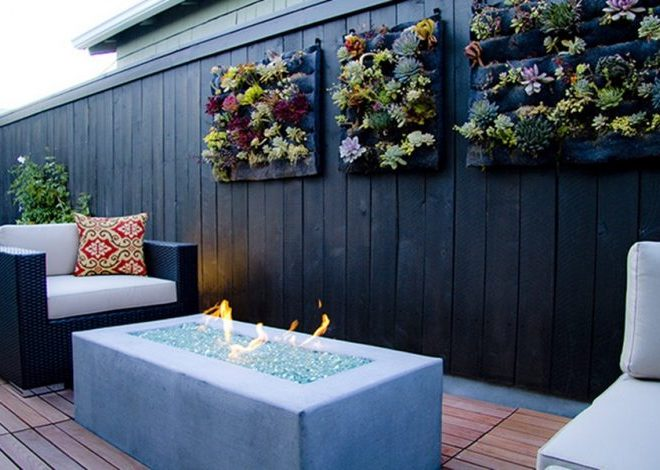 Succulent wall garden ideas